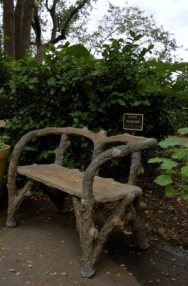 Botanical Garden - San Antonio, TX (Pt. 1)